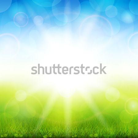 Beautiful summer  Stock photo © user_10003441