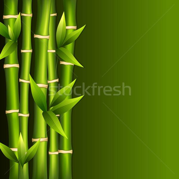 Verde bambu árvore paisagem verão planta Foto stock © user_10003441