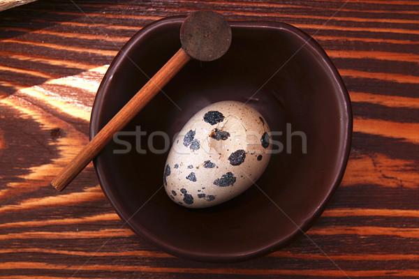 Quail egg Stock photo © user_11056481
