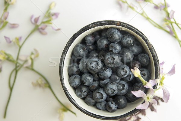 Bilberry in enameled mug Stock photo © user_11056481