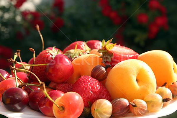 果物 白 プレート 花 食品 パーティ ストックフォト © user_11056481