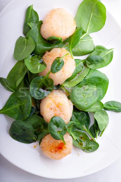 Salata hizmet beyaz plaka akşam yemeği Stok fotoğraf © user_11224430