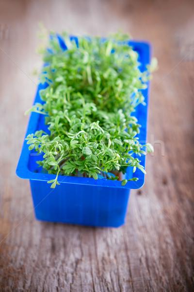 Taze yenilebilir sağlıklı su kutu yeşil Stok fotoğraf © user_11224430