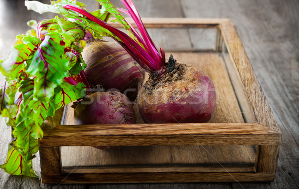 Raw Organic Beets Stock photo © user_11224430