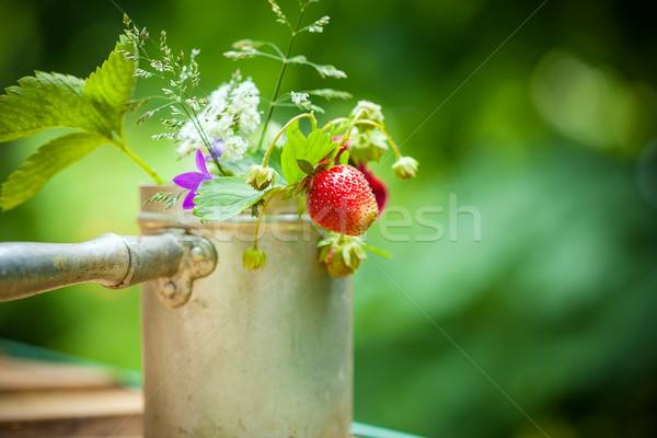 Bouquet of strawberries Stock photo © user_11224430