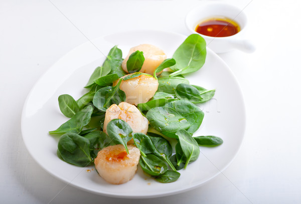 Scallop Salad with greenery Stock photo © user_11224430