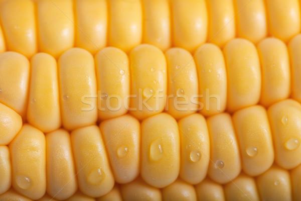 Padrão fresco amarelo maduro milho Foto stock © user_11224430