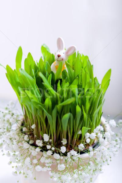 Coelho ovos flores brancas páscoa símbolos diversão Foto stock © user_11224430