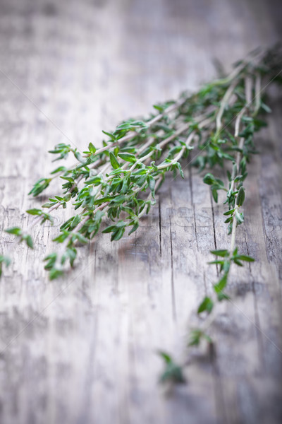 Green thyme on the wood table Stock photo © user_11224430