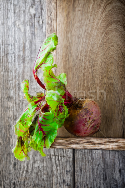 Raw Organic Beet Stock photo © user_11224430