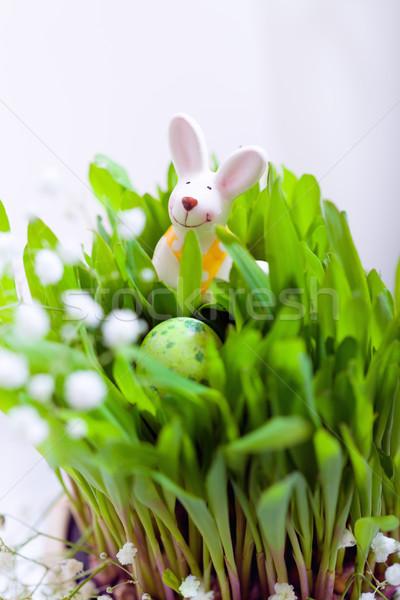 Ovos de páscoa coelho branco diversão ovos ovo de páscoa Foto stock © user_11224430
