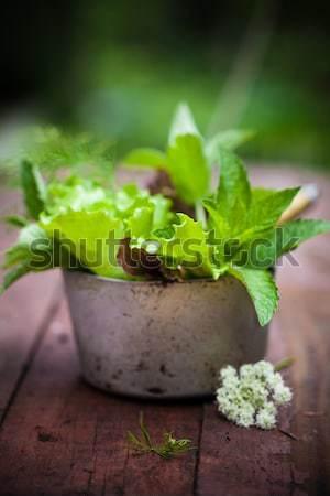 Friss saláta kert rusztikus csésze fából készült Stock fotó © user_11224430