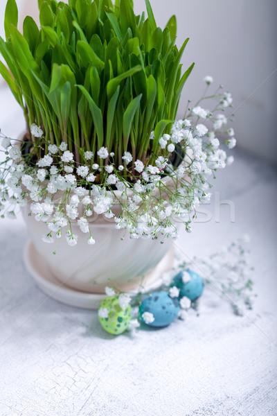 Foto d'archivio: Uova · fiori · bianco · Pasqua · simboli · erba