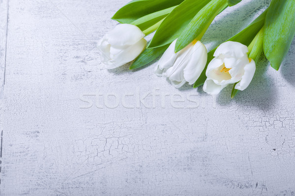 White tulips on wooden table Stock photo © user_11224430