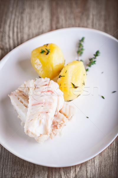 Gestoomd vis aardappel witte plaat voedsel Stockfoto © user_11224430