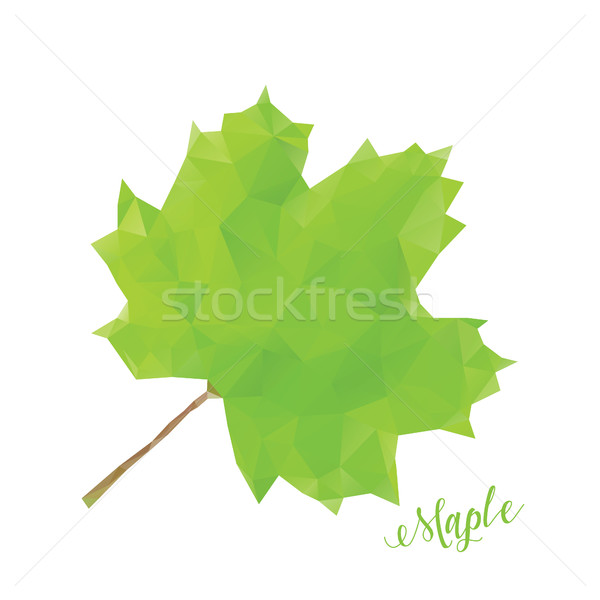 Green maple leaf in low poly style Stock photo © user_11397493