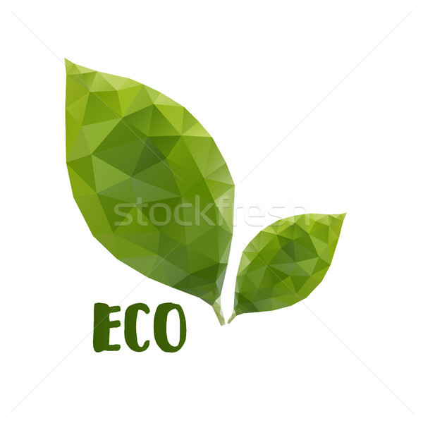 Low poly leafs. Eco concept Stock photo © user_11397493