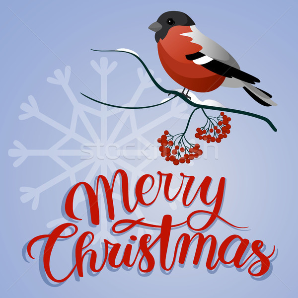 Merry christmas postcard. Bullfinch on a branch with christmas decorations Stock photo © user_11397493