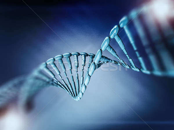 Dna Modell 3D Wissenschaft Rendering Stock foto © user_11870380