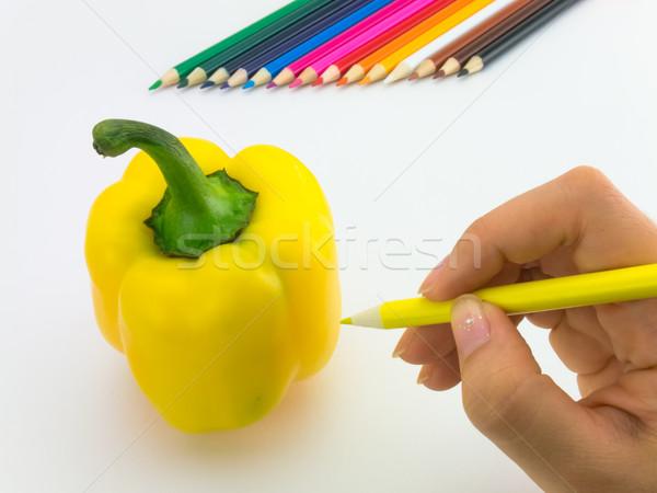 Desenho páprica como frutas legumes Foto stock © user_9323633