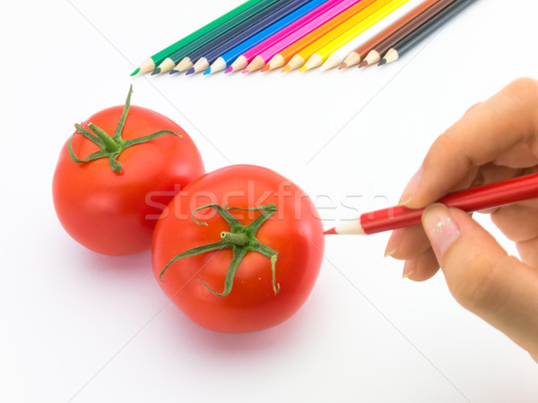 Dibujo tomate como frutas hortalizas Foto stock © user_9323633