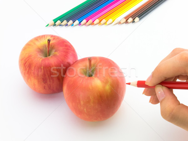 çizim elma gibi meyve sebze Stok fotoğraf © user_9323633