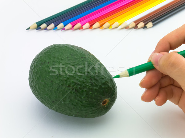 çizim avokado gibi meyve sebze Stok fotoğraf © user_9323633