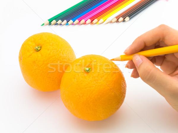 Tekening oranje zoals vruchten groenten Stockfoto © user_9323633