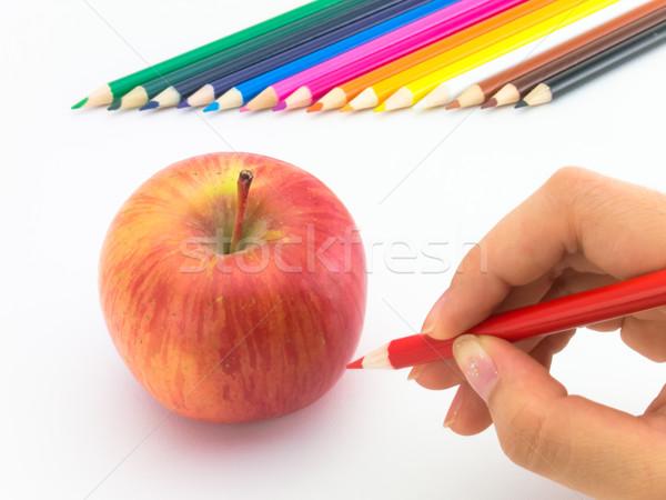 Foto stock: Desenho · maçã · como · frutas · legumes