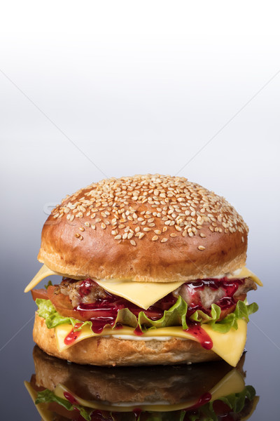 Burger With Vegetables Stock photo © user_9834712