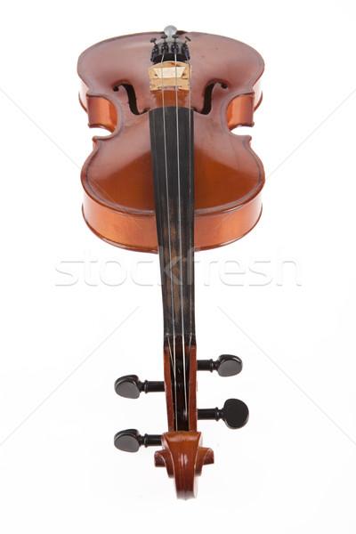 Violin Stock photo © user_9834712