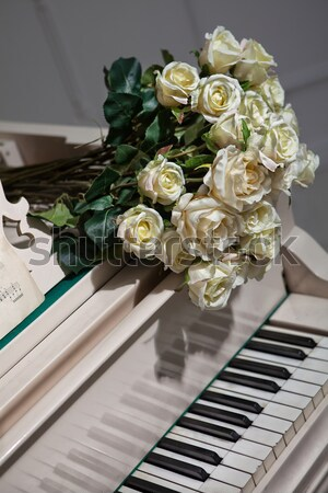 Music And Roses Stock photo © user_9834712
