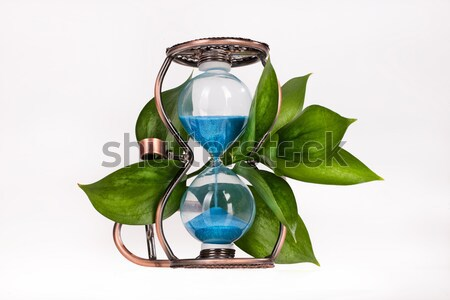 Sandglass With Leaves Stock photo © user_9834712