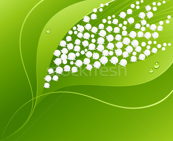 Stock photo: Lily of the valley. Vector illustration.
