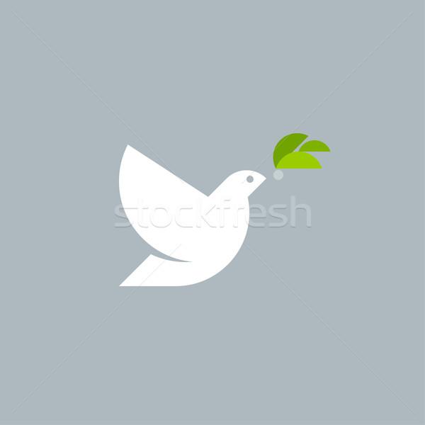 Stock fotó: Vektor · logo · sablon · fehér · galamb · olajbogyó