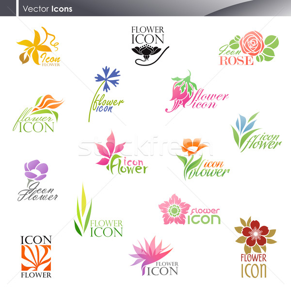 Flowers. Vector logo template set. Elements for design. Icon set Stock photo © ussr