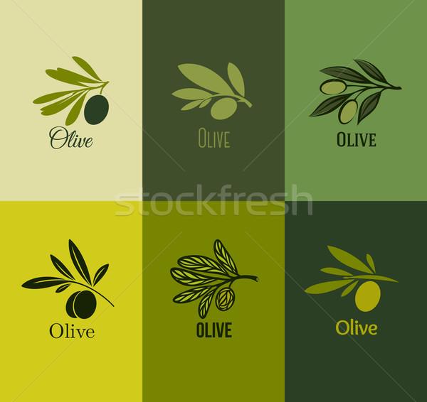 оливкового филиала набор Этикетки продовольствие лист Сток-фото © ussr