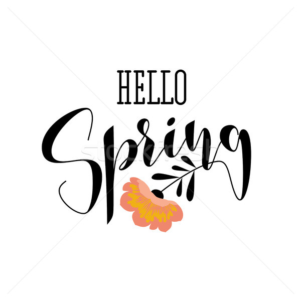 Elegant hello spring lettering and gorgeous pink flower Stock photo © ussr