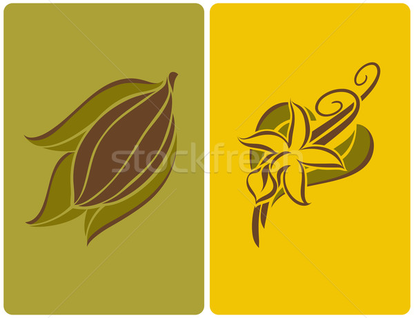 Stock photo: Cocoa bean and vanilla flower with pods. Vector illustration.