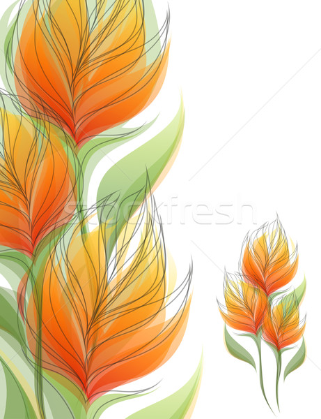 Stock fotó: Virágok · színes · virág · természet · terv · háttér