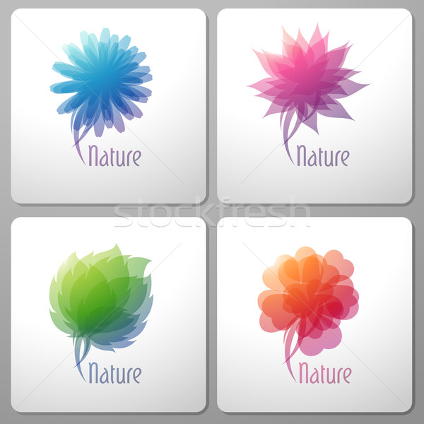 Photo stock: Nature · design · affaires · fleur · été