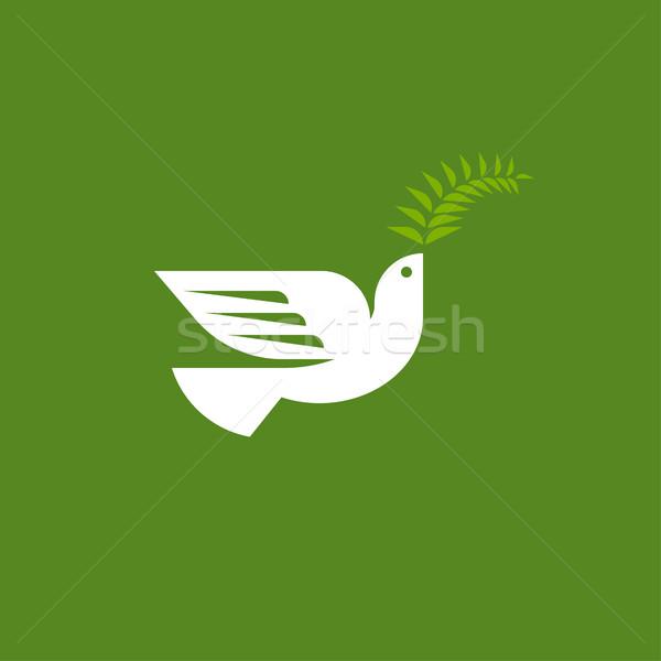 Elegancki dove wektora logo szablon biały Zdjęcia stock © ussr
