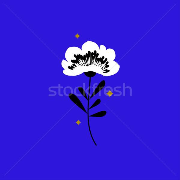 Flower and stars. Elegant design elements on neon blue background Stock photo © ussr