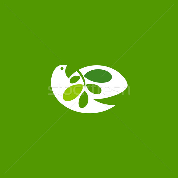 Peace dove with olive branch on green background. Elegant vector Stock photo © ussr