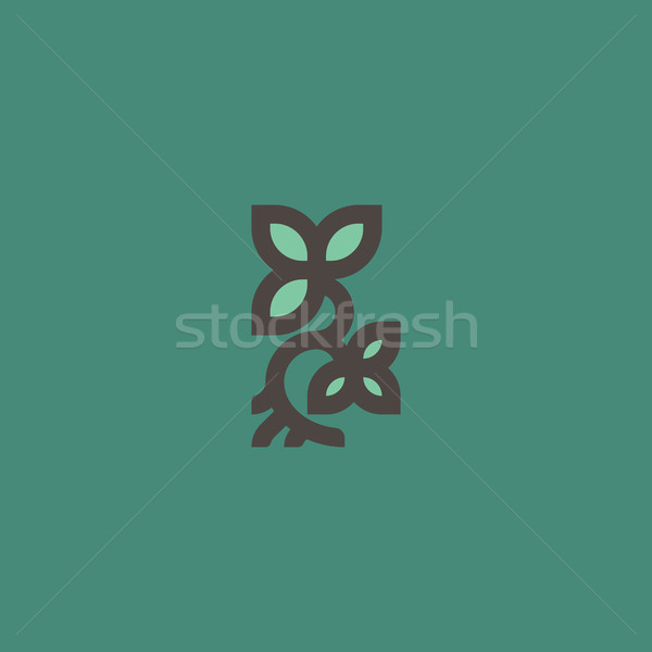 Small plant with leaves and root. Line logo template or icon Stock photo © ussr