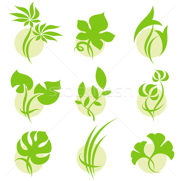 Leaves. Vector logo template set. Elements for design. Icon set. Stock photo © ussr