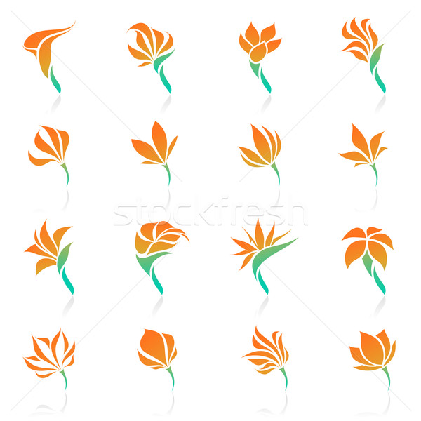 Tropical flowers. Vector logo template set. Elements for design. Stock photo © ussr