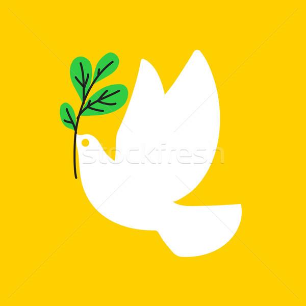 Paz pomba estilo branco pombo oliva Foto stock © ussr