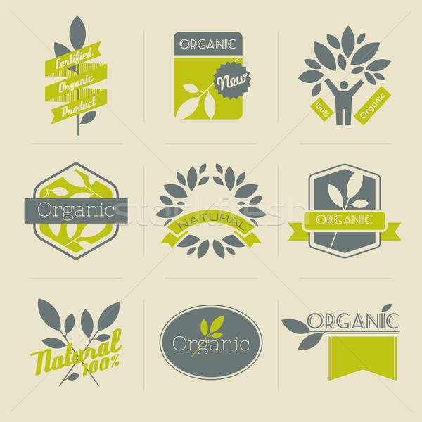 Stock photo: Organic retro labels, badges and other design elements with leaves. Vector illustration.