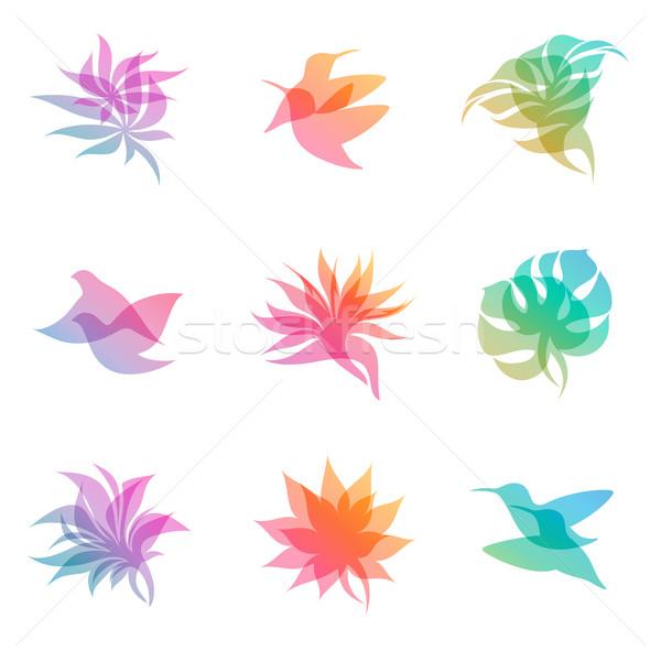 Pasztell természet vektor logo sablon szett Stock fotó © ussr